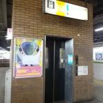 DSC06252